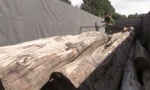 Bắt xe tải chở hơn 7m3 gỗ không rõ nguồn gốc