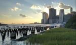 Google Pixel/Pixel XL 'công bố' loạt ảnh 'lung linh' từ camera sau