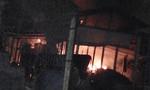 Cháy nổ trại bò sữa ở TP.HCM