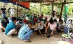 Trinh sát bao vây trường gà, bắt giữ 34 đối tượng trong vườn dừa