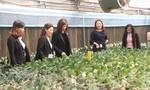 Nguồn vốn Agribank thúc đẩy tái cơ cấu nông nghiệp