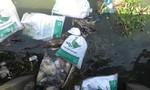 Hàng trăm bao tải bỏ xác vịt chết trôi trên sông Đà Rằng