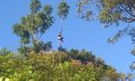 """Năm khỉ nói chuyện voọc trên """"bán đảo Tề thiên""""- Kỳ 2: Sống chung cùng voọc"""
