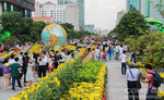 Người dân thành phố du xuân tại đường hoa