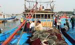 Kinh hoàng vì bị tàu Trung Quốc cướp sạch, ngư dân vẫn quyết tâm bám biển
