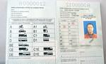 TP.HCM: Mở thêm điểm nhận hồ sơ cấp giấy phép lái xe quốc tế