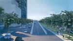 TP.HCM: Sẽ bứng dưỡng toàn bộ 16 cây xà cừ trên đường Tôn Đức Thắng