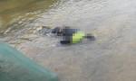 Phát hiện thi thể nam thanh niên bị trói chân tay bằng dây thừng dưới sông