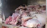 Bình Dương: Gần 1 tấn thịt heo không kiểm dịch tuồn về chợ Đông Đô