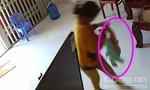 """Vụ """"osin"""" dốc ngược đầu bé trai 8 tháng tuổi ở Bình Thuận: Cơ quan điều tra cho giám định thương tích"""