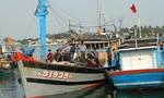 Vụ tàu ngư dân Quảng Nam bị tàu Trung Quốc cướp, phá ngư cụ:  Ngư dân lo bảo hiểm không chi trả