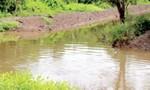 Cà Mau: Phát hiện xác chết trên bờ vuông tôm