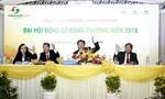 Công ty cổ phần Ánh Dương họp 'Đại hội đồng cổ đông thường niên'