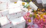 Tiêu hủy gần 1 tấn trái cây Trung Quốc