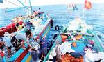 3 đường dây nóng của Bộ Công thương hỗ trợ ngư dân trong vụ cá chết