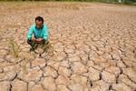 Hạn mặn miền Tây và nguy cơ bất ổn