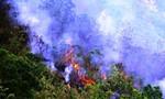 Cháy hơn 10 ha keo rừng ở Quảng Ngãi