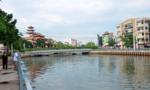 Cá chết trên kênh Nhiêu Lộc - Thị Nghè cơ bản được vớt hết