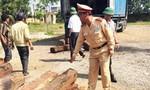Khai chở hạt tiêu, phát hiện 30m3 gỗ quý hiếm trái phép