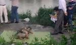 Nam Định: Phát hiện thi thể nam giới bị trói tay trôi trên sông