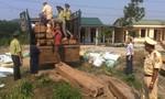 CSGT phát hiện 6 mét khối gỗ lậu được ngụy trang trên xe tải