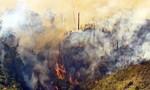 Bình Định: Chữa cháy rừng, một người thiệt mạng