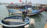 Lợi dụng ngư dân ít ra khơi vì cá chết, tàu cá Trung Quốc xâm phạm lãnh hải Việt Nam