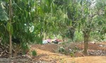 Sinh viên chết 'bất minh' vì đi phượt với nhóm bạn mới quen trên Facebook