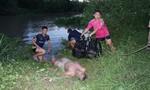 Nhậu xong rủ nhau đi tắm sông, một nam thanh niên chết đuối