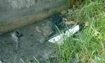 Thi thể người đàn ông có nhiều vết đâm nằm dưới cống thoát nước