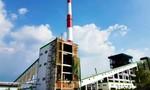 Lo nhà máy giấy Trung Quốc 'bức tử' sông Hậu
