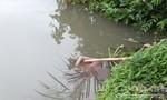 Phát hiện thi thể người đàn ông không mặc áo nổi lềnh bềnh trên sông
