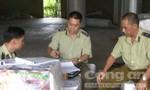 Phát hiện cơ sở sản xuất gia công giấy vệ sinh giả quy mô lớn
