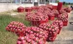 Phạt hành chính 17 thương lái Trung Quốc