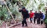 Vụ phá rừng ở Lâm Đồng: Xử lý nghiêm cá nhân, đơn vị có dấu hiệu tiêu cực