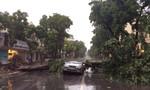 Nhiều cây lớn đổ ngáng đường, đè ô tô ở Hà Nội