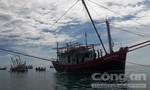 Lai dắt tàu cá phá nước vào bờ an toàn