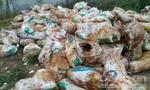 Công an đang gửi mẫu xét nghiệm vụ dân tố Công ty chôn rác thải bất thường