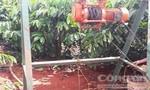 Hai người bị điện giật thương vong khi đi đào giếng thuê