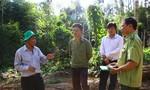 Đắk Nông: Phó chủ tịch UBND tỉnh trực tiếp kiểm tra tình trạng phá rừng