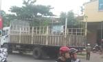 Bị xe tải tông, một phụ nữ tử vong tại chỗ