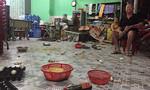 Giang hồ cầm mã tấu đập phá quán nhậu, đòi nợ ở Sài Gòn