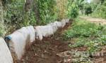 5 tấn xi măng dư thừa sau khi xây đường nông thôn mới
