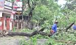 Bão số 4 gây thiệt hại lớn đến các tỉnh miền Trung