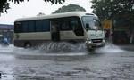 TP.Vinh chìm trong biển nước do bão số 4