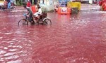 Đường phố ngập trong 'biển máu' sau lễ hội truyền thống ở Bangladesh