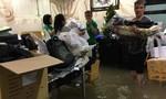 Biệt thự hơn 60 tỷ của Đàm Vĩnh Hưng ngập nặng sau trận mưa lớn