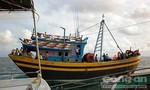 Cấm hành nghề vĩnh viễn cặp giã cào đẩy kiểm ngư xuống biển