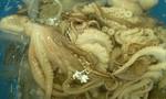 Gần 1 tấn râu bạch tuộc hết hạn trong kho hàng ở Sài Gòn