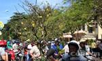 Chợ hoa Phan Thiết nhộn nhịp trong ngày 30 Tết